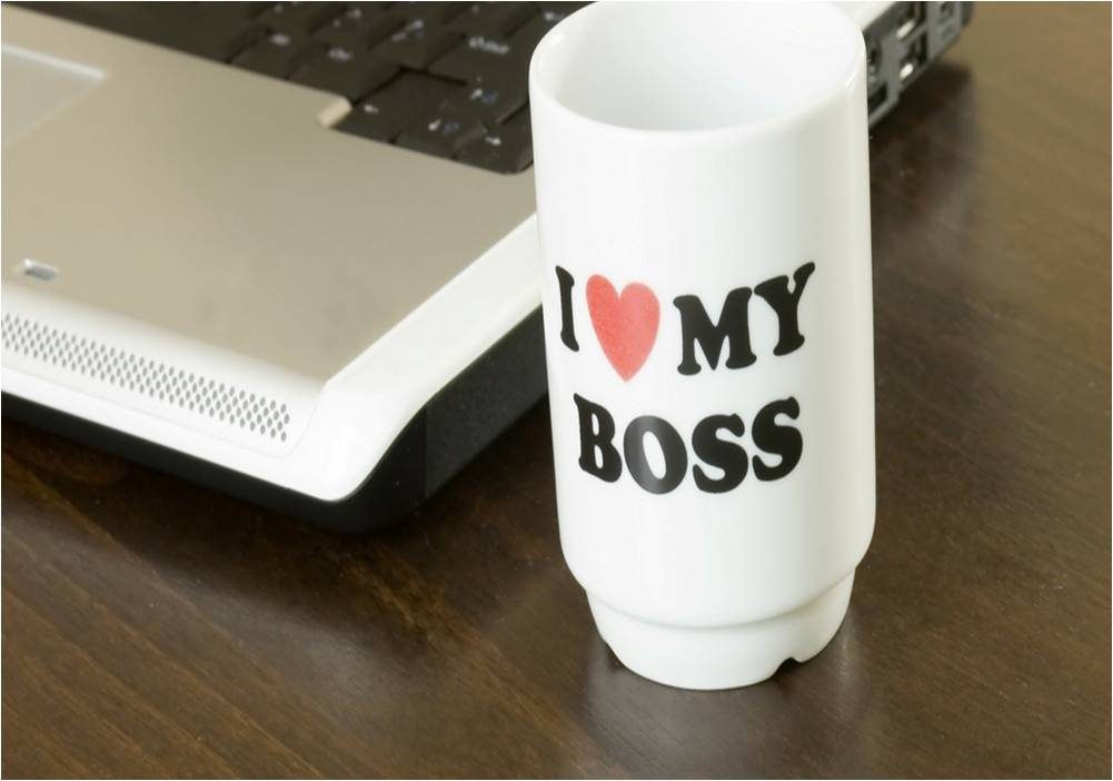 How to make your Boss Happy